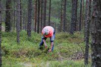 Weiterlesen: Von den Blaubeer-Hügeln im Harz