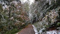 Weiterlesen: Der erste Schnee auf dem Großen Knollen