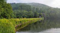 Weiterlesen: 300 Jahre Wiesenbeker Teich