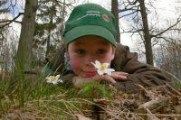 Weiterlesen: Wieder vier Open-Air-Semester im Nationalpark Harz ausgeschrieben