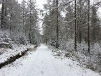Weiterlesen: Harzer Tourismusverband bittet Besucher, wegzubleiben