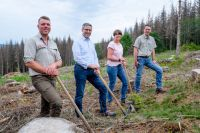 Weiterlesen: Harz Energie forstet auf
