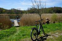 Weiterlesen: Geführte E-Bike-Touren am Zisterzienserkloster Walkenried