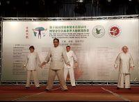 Weiterlesen: Tai Chi und QiGong-Kurse in Steina