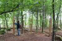 Weiterlesen: Wolf-Station am Naturmythenpfad Braunlage wiedereröffnet
