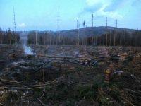 Weiterlesen: Lagerfeuer im Wald sorgt für Feuerwehreinsatz