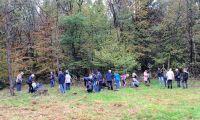 Weiterlesen: Feier im Erinnerungswald
