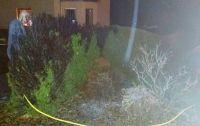 Weiterlesen: Brennende Thujahecke – Brandstiftung vermutet