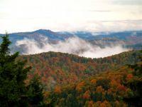 Weiterlesen: Harzer Herbst