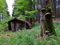 Weiterlesen: Hexenhaus im Wald