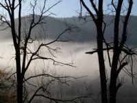 Weiterlesen: Morgennebel an der Odertalsperre