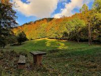Weiterlesen: Goldener Oktober in der Krummen Lutter