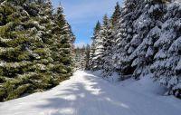 Weiterlesen: Traumhafte Schneewittchen-Loipe