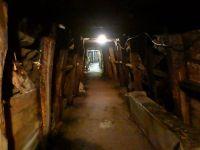 Weiterlesen: Montan-historische Wanderungen: Teil drei