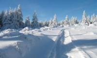Weiterlesen: Winter im Harz: Fotos von Daniel Schwarz