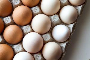 Die Farbe der Eier hängt von der Rasse der Hühner ab