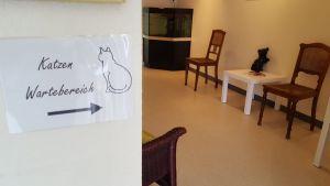 Separater Katzenbereich
