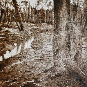 """""""Wasserwege"""": Die Künstlerin dokumentiert die fortschreitenden Veränderungen"""