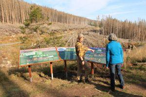 Themeninseln wie die an der Schluftwasser-Kurve erklären Brockenwanderern die Hintergründe des Waldwandels im Nationalpark Harz (Foto: Mandy Gebara)