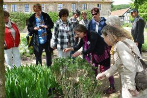 Kloster Michaelstein: sommerliche Gartenführung mit Klostergärtnerin Sabine Volk (Foto: Kulturstiftung Sachsen-Anhalt)