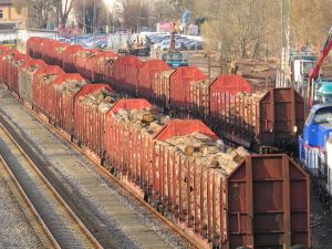 Auch hier gäbe es sechs Monate Stillstand: 2004 übernahm Reimann den Güterbahnhof in Herzberg von der Deutschen Bahn.