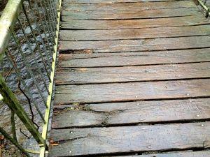 Neben der WgiR- hat sich auch die CDU-Fraktion vom nicht mehr ganz ordnungsgemäßen Zustand der Wilhelmi-Brücke überzeugt und hier den Bodenbelag…