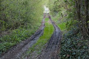 Der Hermelinweg ist augenscheinlich nie ausgebaut worden. Oft ist er unpassierbar.