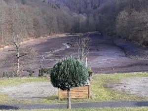 Blick auf den leeren Wiesenbeker Teich.