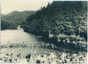 Der Wiesenbeker Teich war schon seit jeher eine Freizeitattraktion....