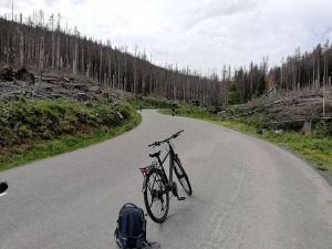 Natürlich ging es auf der Strecke durch den Harz auch kilometerlang bergan.