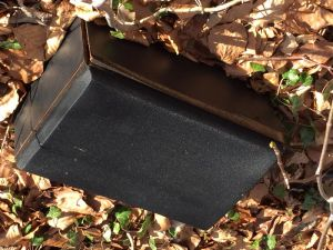 ....Box: illegale Müllentsorgung an der Koldung