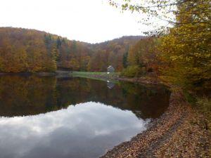 WIesenbeker oder Aufrichtigkeiter Teich mit Striegelhäuschen