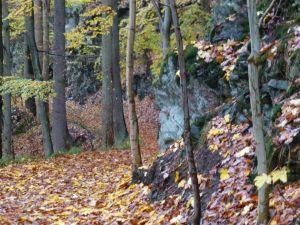 8b Der 1721 angelegte Hanggraben führte zusätzlich Oderwasser auf die Kunsträder der Grube Aufrichtigkeit