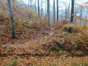 14c Graben zur Kupferhütte