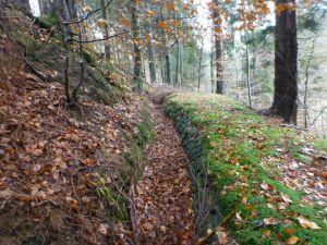 21a Durch diesen 1801 anglegten Graben gelangte Wasser aus dem Übelsbachtal in den Kupferroser Teich
