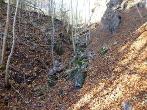 30.Punkt Kupfergruben am Mittelberg und Schwerspatgrube Hoher Trost