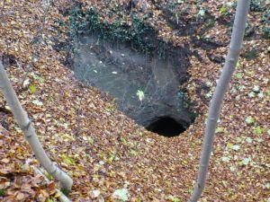 41.Punkt  Zum Teil tiefe  im Wald verstreute Pingen am Butterberg geben Zeugnis von sehr altem Bergbau