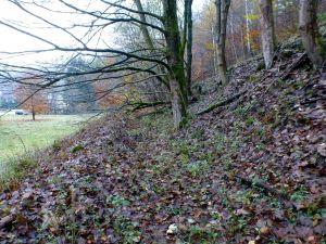 45a: Mittelalterlicher Hüttenplatz an der Sperrlutter mit Resten des Aufschlaggrabens.