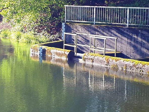 Der Überlauf des Wiesenbeker Teiches am Dienstagmorgen. Der Wasserstand ist innerhalb eines Tages um sechs Zentimeter gestiegen. (Foto: Dieter Pfeiffer)