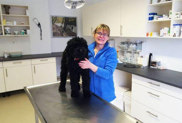 Frau Dr. Luthin im Hundebehandlungsraum