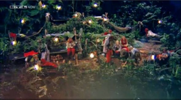 Knöllchen-Horst würde im Dschungel mal ordentlich durchforsten. (Screenshot von RTL Now)