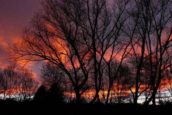 Sonnenaufgang. Foto: Gerhard Bock
