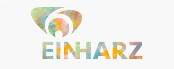 b_590_0_16777215_00_images_stories_com_form2content_p15_f11834_Logo_EinHARZ.jpg