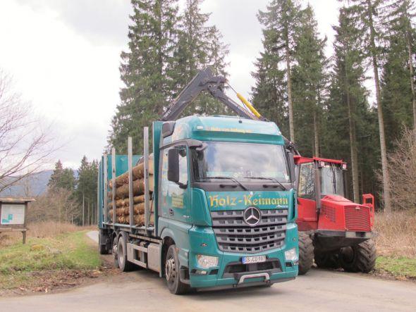 """Wenn es nach dem Volksbegehren """"Artenvielfalt. Jetzt!"""" ginge, wären derartige Holzarbeiten im Wald vom 1. März bis 31. August verboten. Fotos: Reimann"""