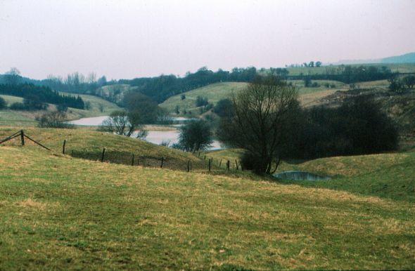 Der Steingraben bei Hochwasser