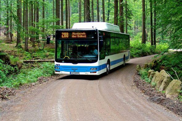 Mit dem Bus durch den Harz: In Sachsen-Anhalt können Gäste des Mittelgebirges schon längst kostenlos den ÖPNV nutzen. (Foto: HVB GmbH)