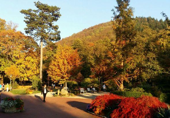 Tolle Herbststimmung im Kurpark
