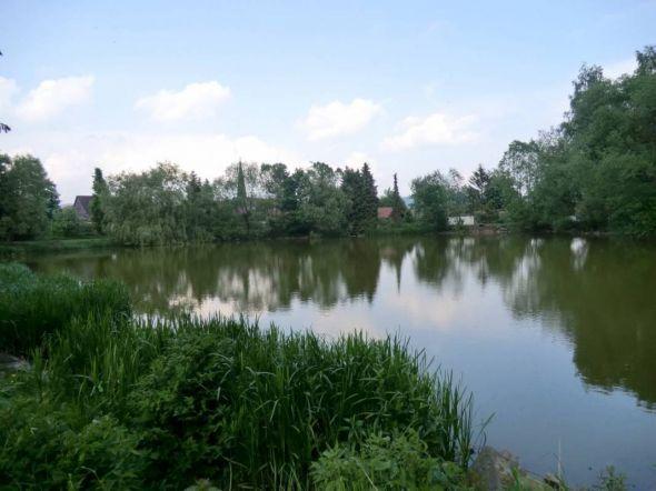 Dorfteich Bartolfelde