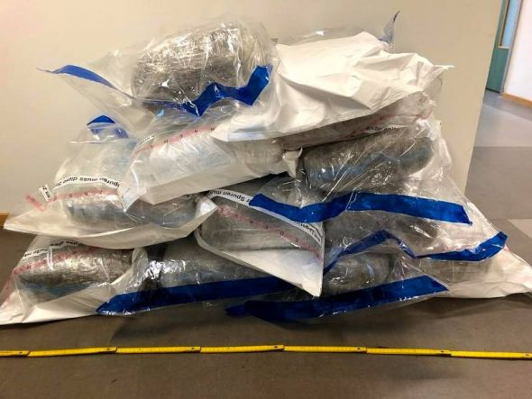 Die Beamten beschlagnahmten in Barbis 60 Kilogramm Marihuana. (Foto: Polizei)
